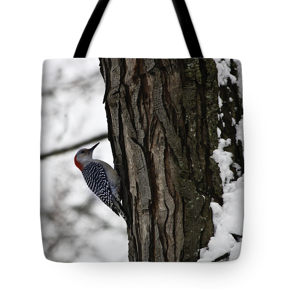 Woodpecker Tote Bag featuring the photograph Red Bellied Woodpecker No 1 by Teresa Mucha