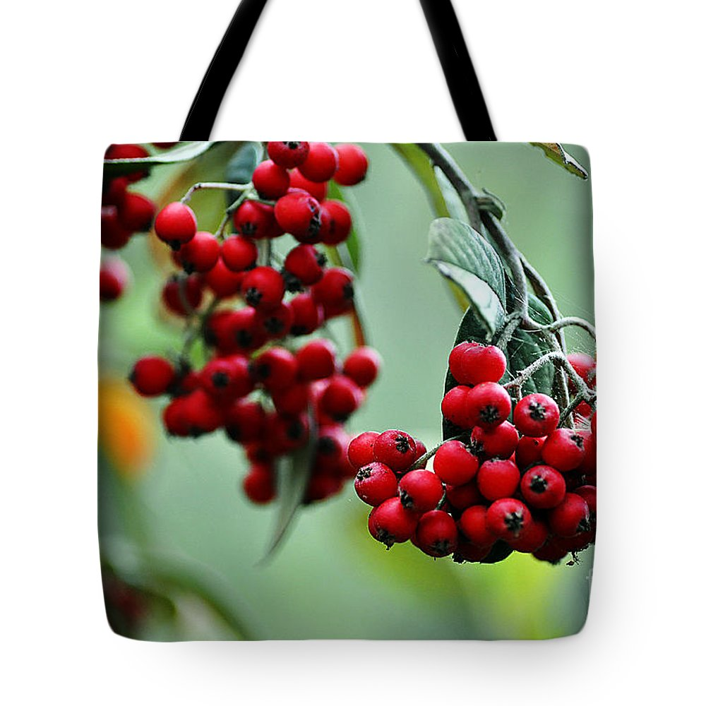 Clay Tote Bag featuring the photograph Red Berries by Clayton Bruster