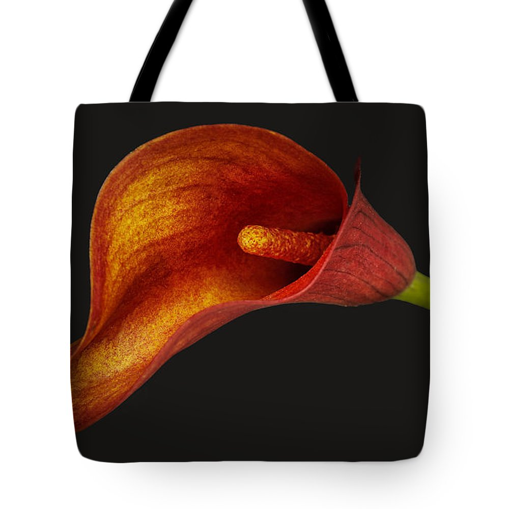 Red Calla Lily Portrait Petals Flower Pano Tote Bag featuring the photograph Red Calla Lily by Sherry Butts