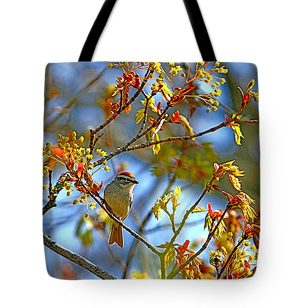 Nature Tote Bag featuring the photograph Red Cap by Marle Nopardi