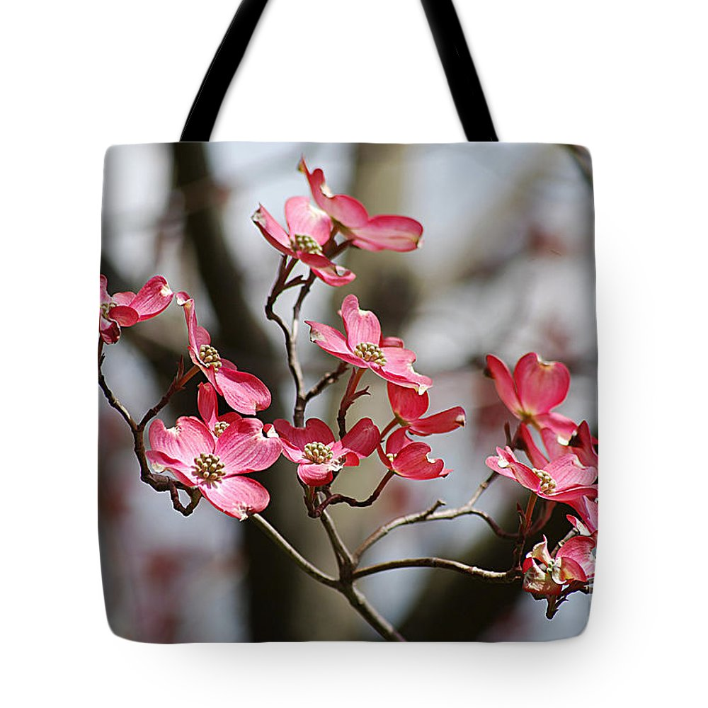 Photograph Tote Bag featuring the photograph Red Cloud Dogwood 2012410_90a by Tina Hopkins