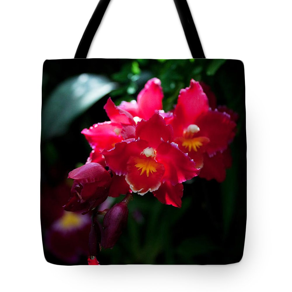 Red Tote Bag featuring the photograph Red Cluster by Robert Sander