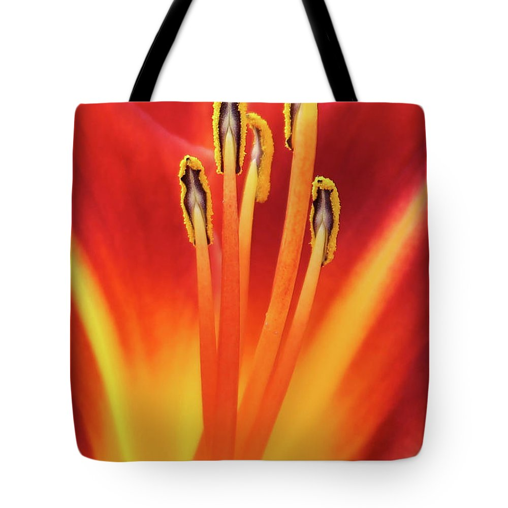 Flower Tote Bag featuring the photograph Red Dance by Erin Donalson