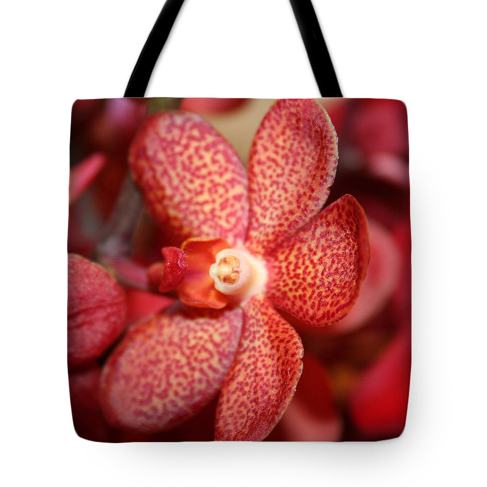 Flowers Macro Nature Digital Photograph Red Vibrant White Tote Bag featuring the photograph Red Dots by Linda Sannuti