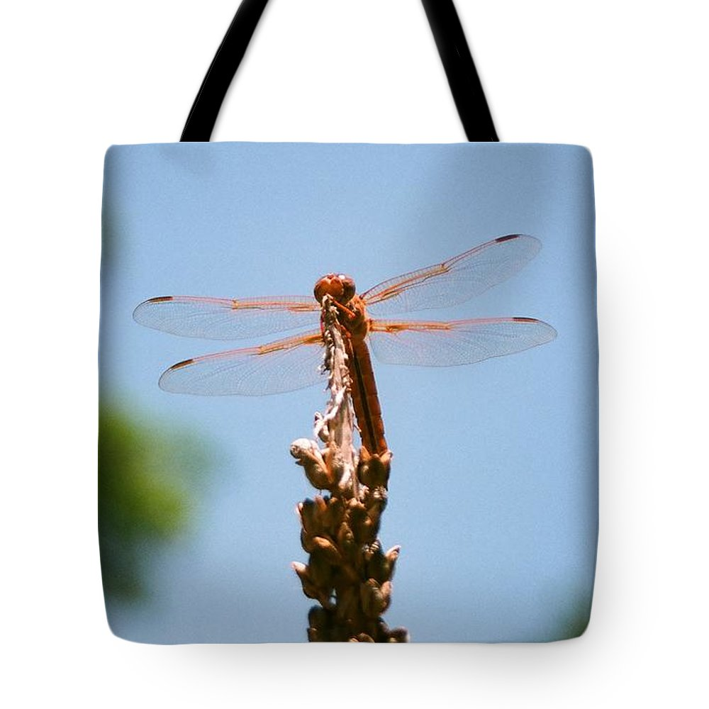 Dragonfly Tote Bag featuring the photograph Red Dragonfly by Dean Triolo
