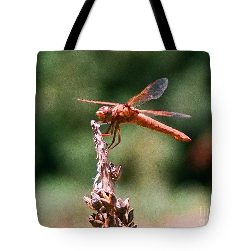 Dragonfly Tote Bag featuring the photograph Red Dragonfly II by Dean Triolo