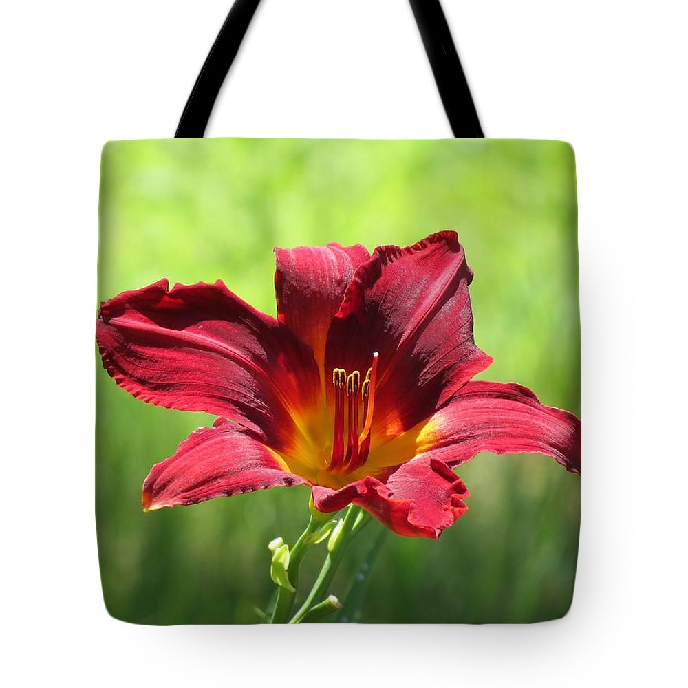 Fire Escape Daylily Tote Bag featuring the photograph Red Escape by MTBobbins Photography