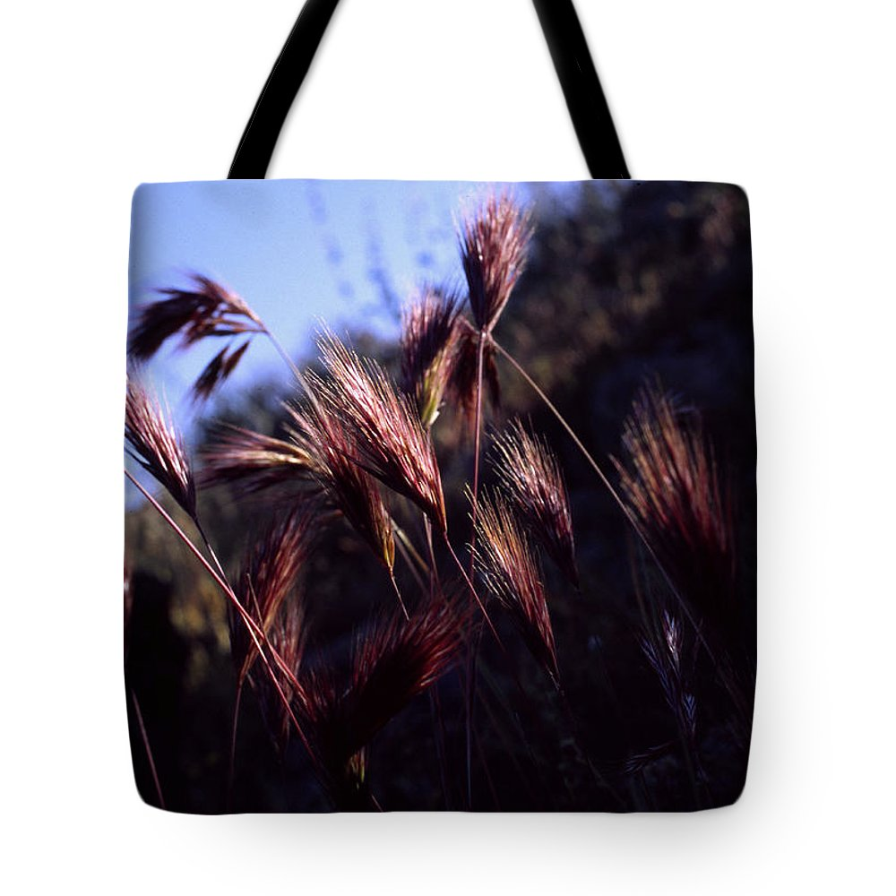 Nature Tote Bag featuring the photograph Red Feathers by Randy Oberg