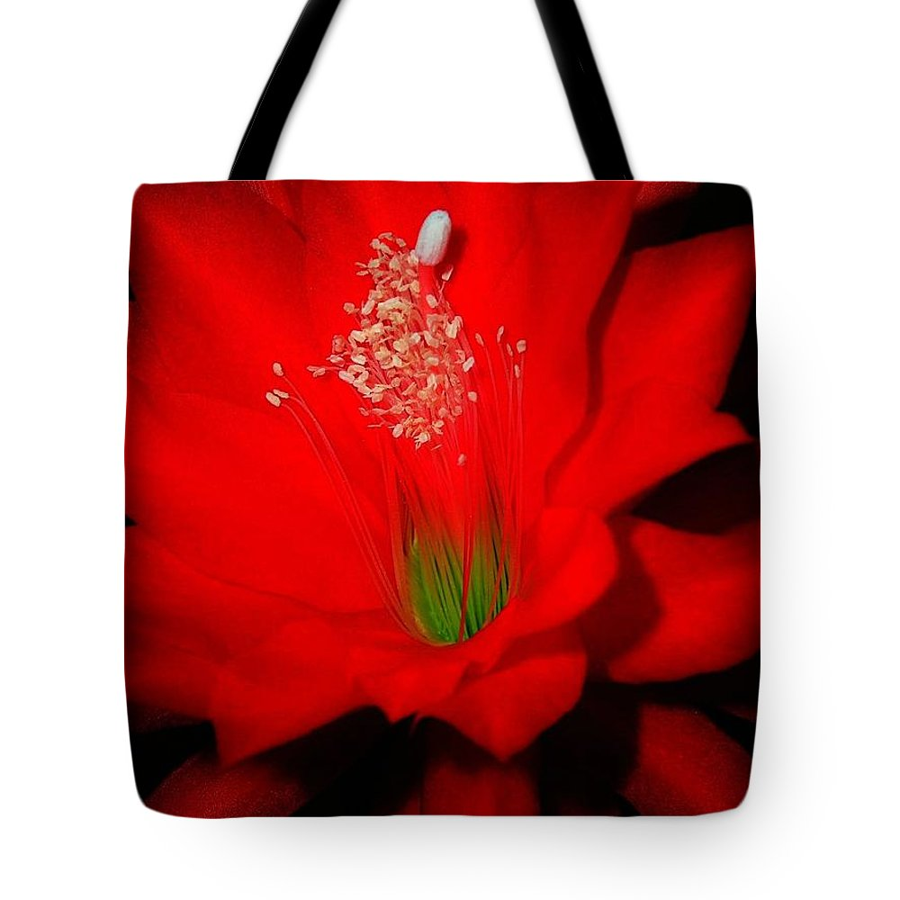 Garden Tote Bag featuring the photograph Red Flower For You by Juergen Weiss
