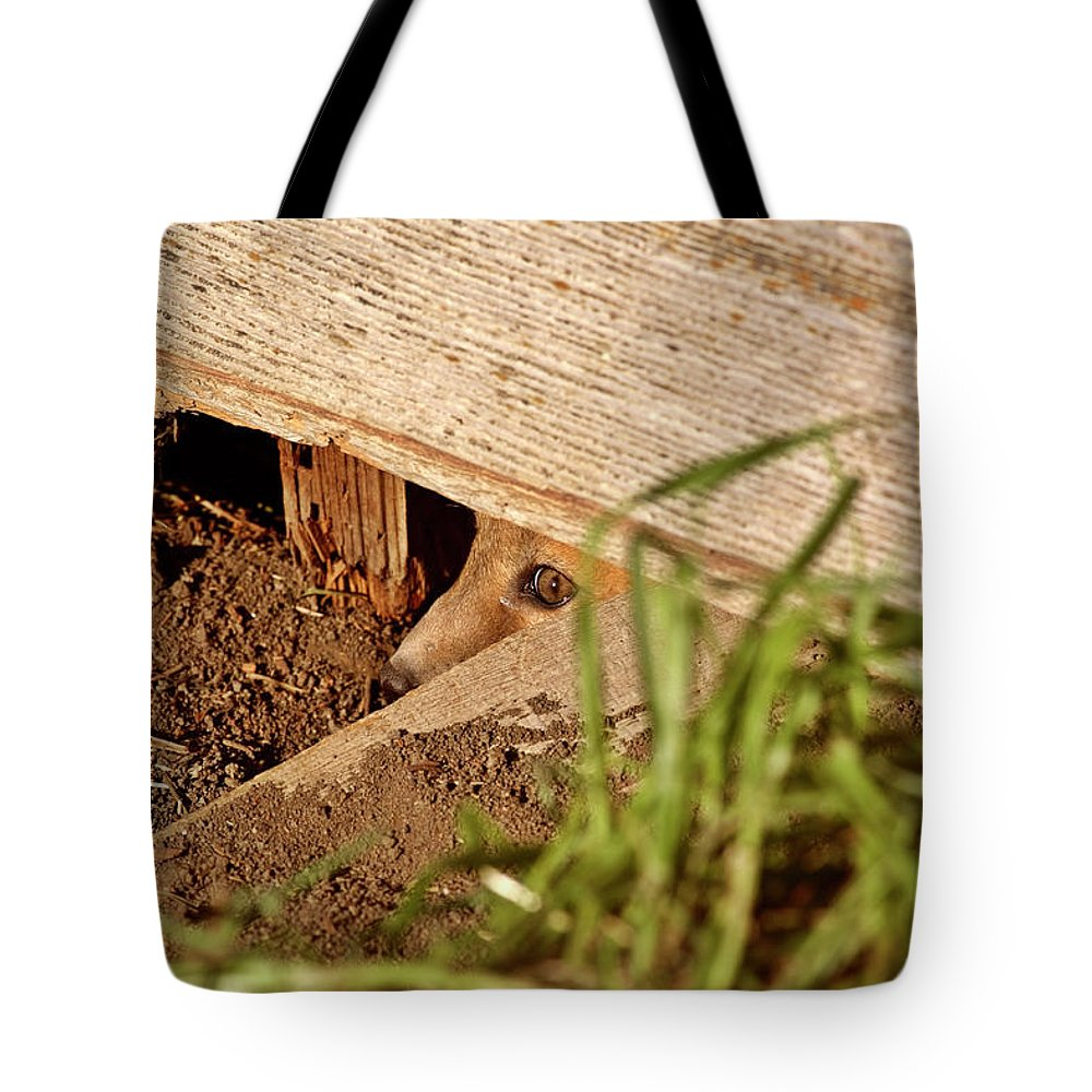 Red Fox Tote Bag featuring the digital art Red Fox Kit Peaking Out From Den Under Old Granary by Mark Duffy
