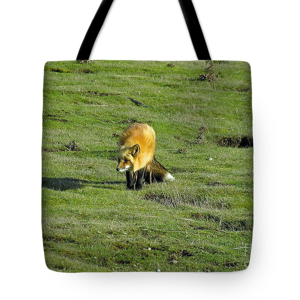 Fox Tote Bag featuring the photograph Red Fox by Louise Magno