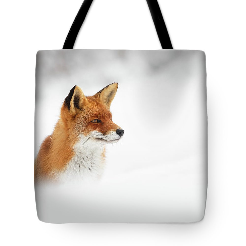 Fox Tote Bag featuring the photograph Red Fox Out Of The Blue by Roeselien Raimond