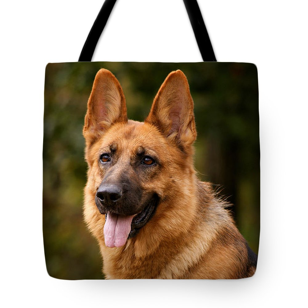 German Shepherd Tote Bag featuring the photograph Red German Shepherd Dog by Sandy Keeton