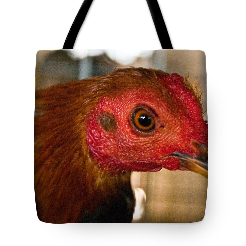 Chicken Tote Bag featuring the photograph Red Headed Chicken by Douglas Barnett