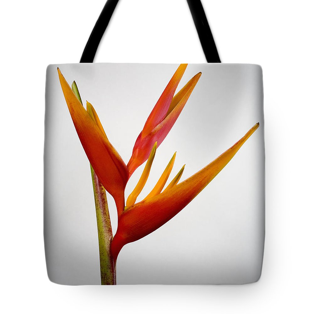 Botanical Tote Bag featuring the photograph Red Heliconia by Tomas del Amo - Printscapes