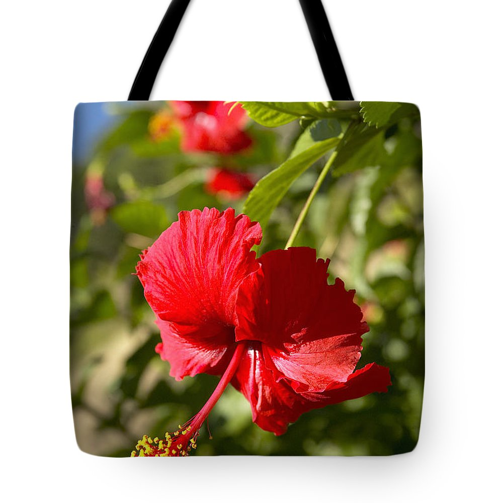 Above Tote Bag featuring the photograph Red Hibiscus by Kyle Rothenborg - Printscapes