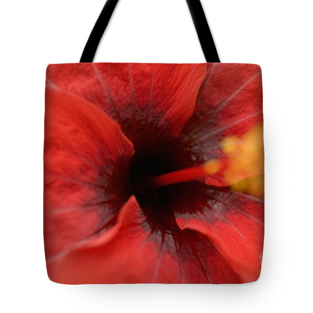 Above Tote Bag featuring the photograph Red Hibiscus by Tomas del Amo - Printscapes