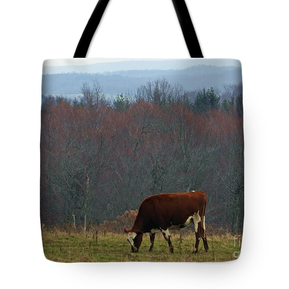 Dairy Tote Bag featuring the photograph Red Holstein Of The Hills by Christian Mattison