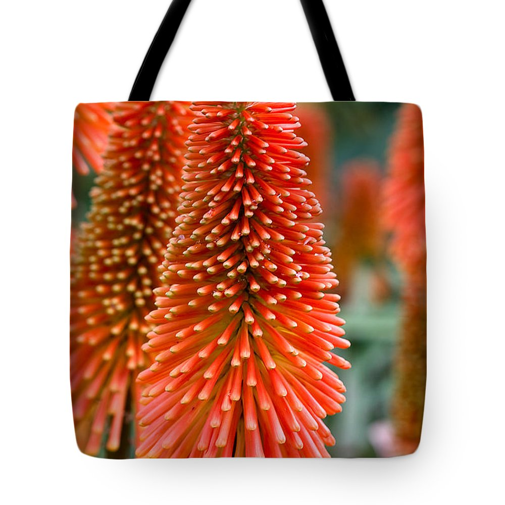Flower Tote Bag featuring the photograph Red-hot Poker Flower Kniphofia by Louise Heusinkveld