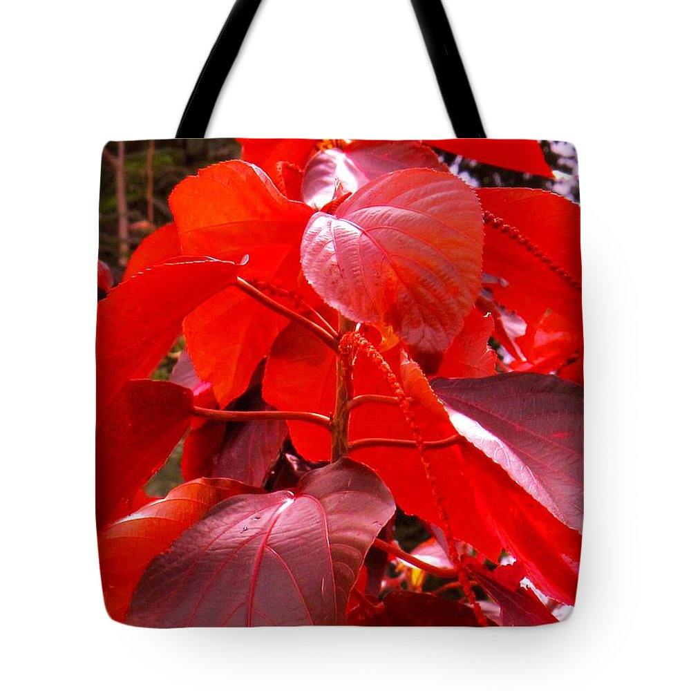 Red Tote Bag featuring the photograph Red by Ian MacDonald