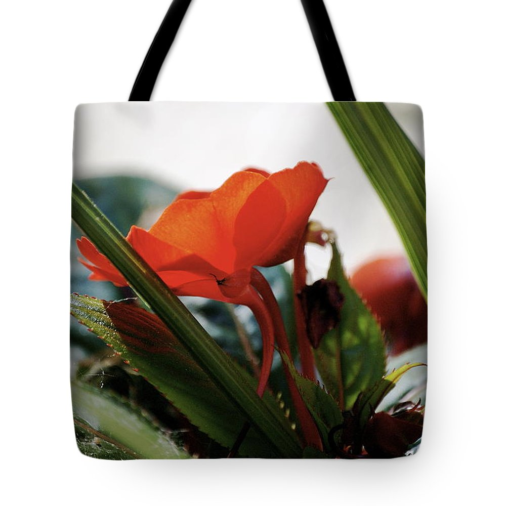 Impatiens Tote Bag featuring the photograph Red Impatiens by Faith Harron Boudreau