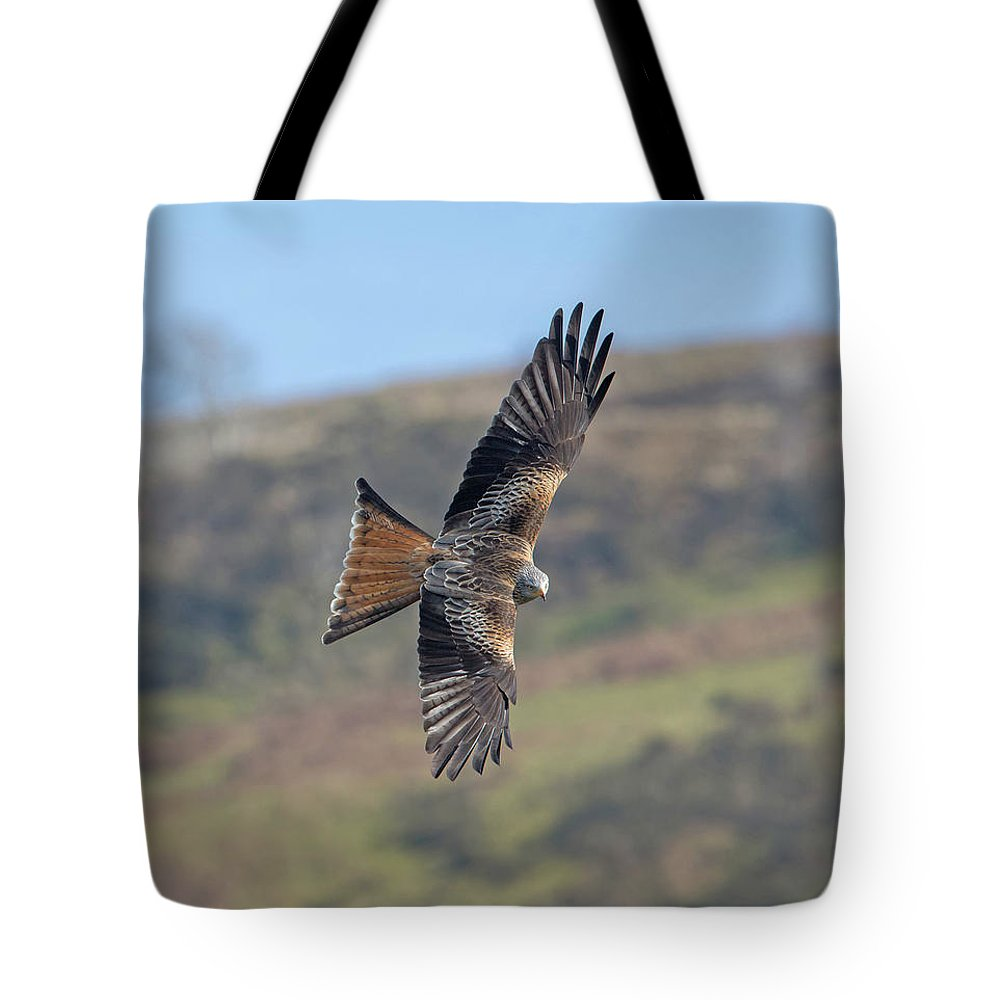 Red Tote Bag featuring the photograph Red Kite by Peter Walkden