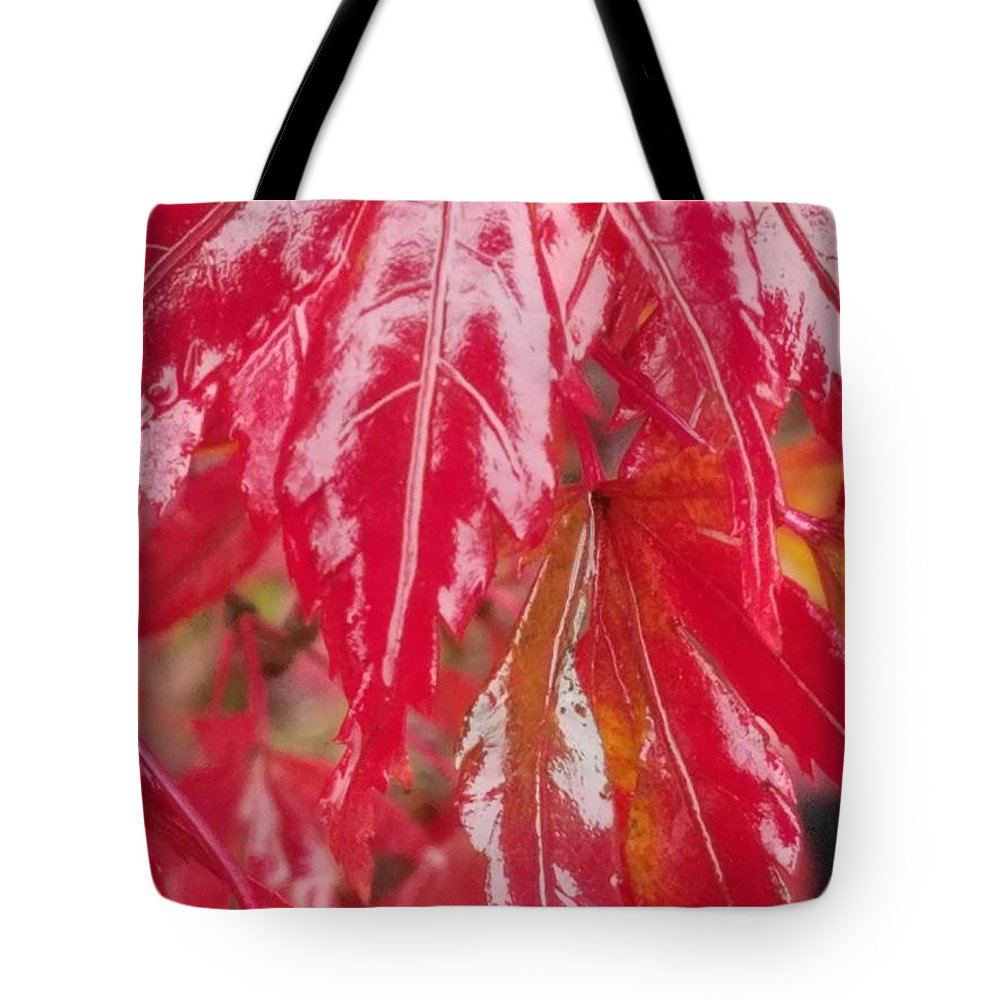 Red Leaf Abstract Tote Bag featuring the photograph Red Leaf Abstract by Maria Urso