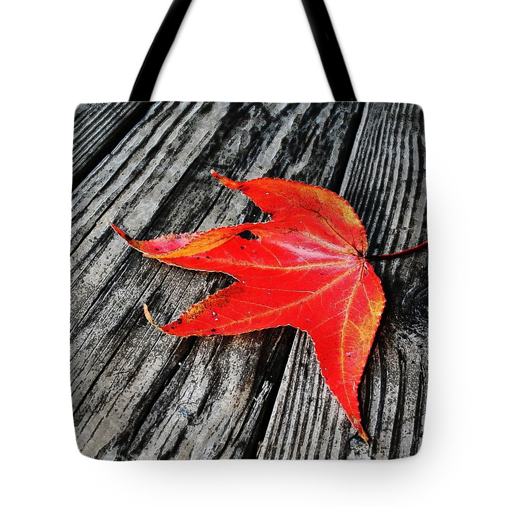 Nature Tote Bag featuring the photograph Red Leaf by Linda Sannuti