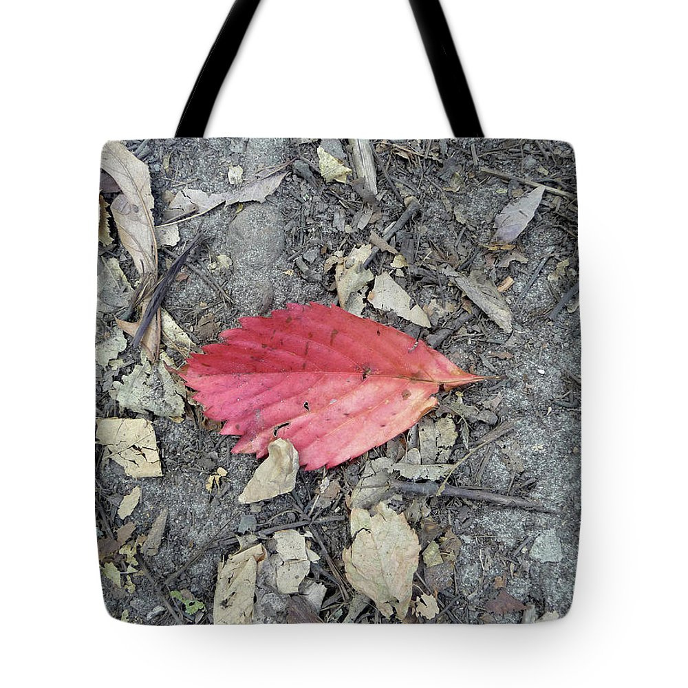 Fall Tote Bag featuring the photograph Red Leaf by Lisa Blake