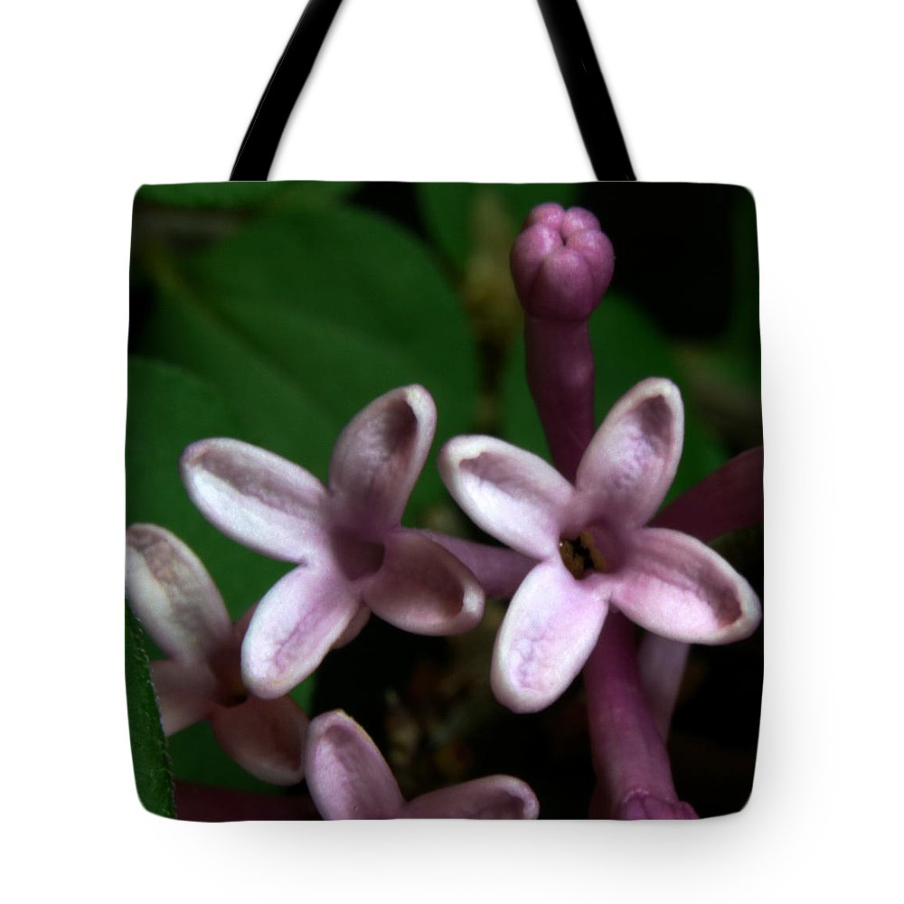 Flower Tote Bag featuring the pyrography Red Lilac 1 by Robert Morin