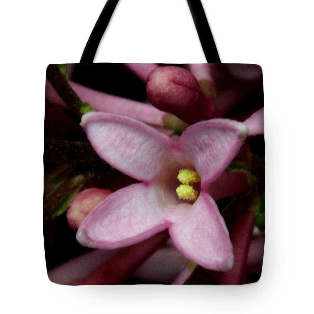 Macro Tote Bag featuring the pyrography Red Lilac 2 by Robert Morin