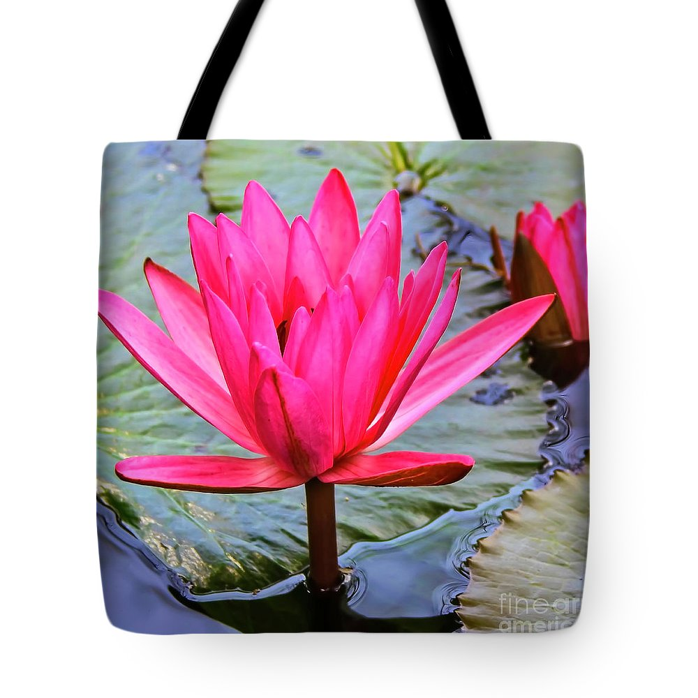 Lotus Flower Tote Bag featuring the photograph Red Lotus by Edita De Lima