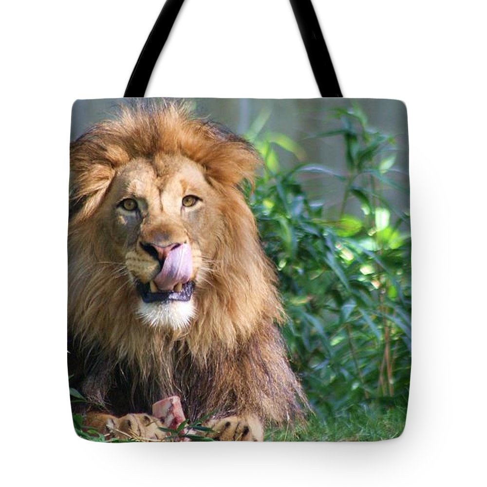 Lion Tote Bag featuring the photograph Red Meat by Mitch Cat