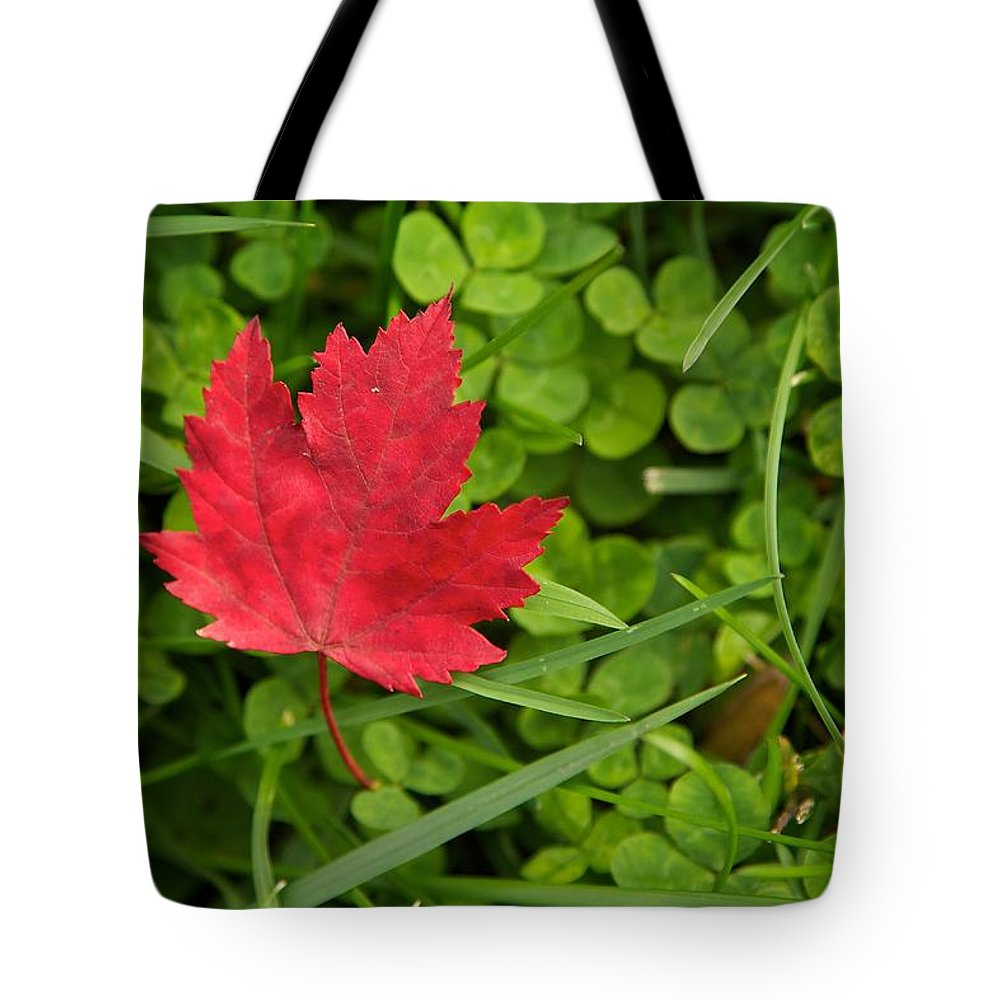 Red Tote Bag featuring the photograph Red by Michaele Boncaro