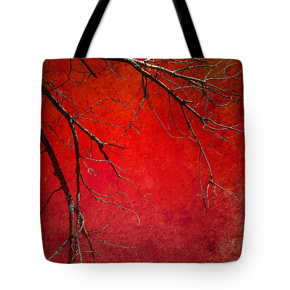Zen Tote Bag featuring the photograph Red Morning by Tara Turner