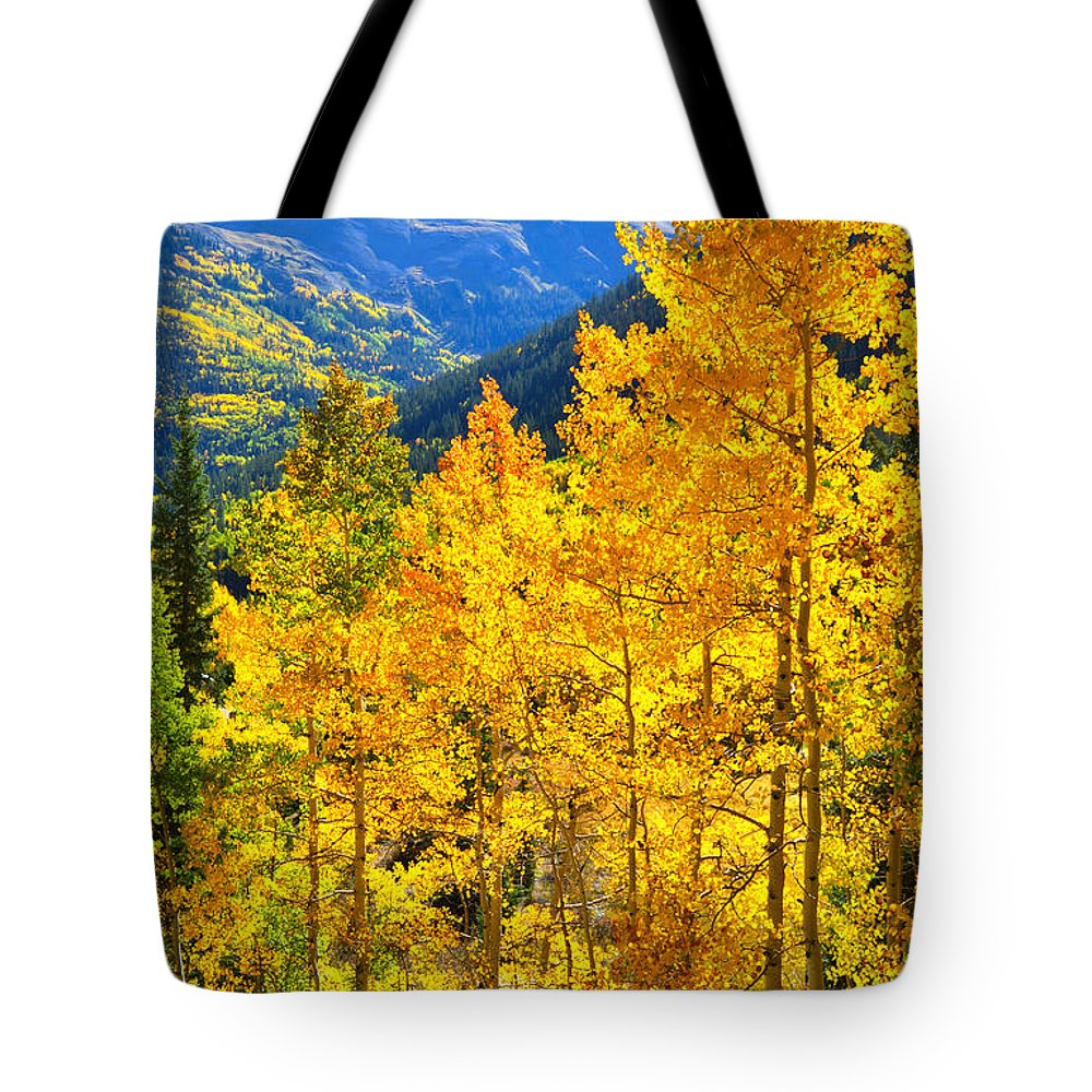 Colorado Tote Bag featuring the photograph Red Mountain Aspens by Ray Mathis