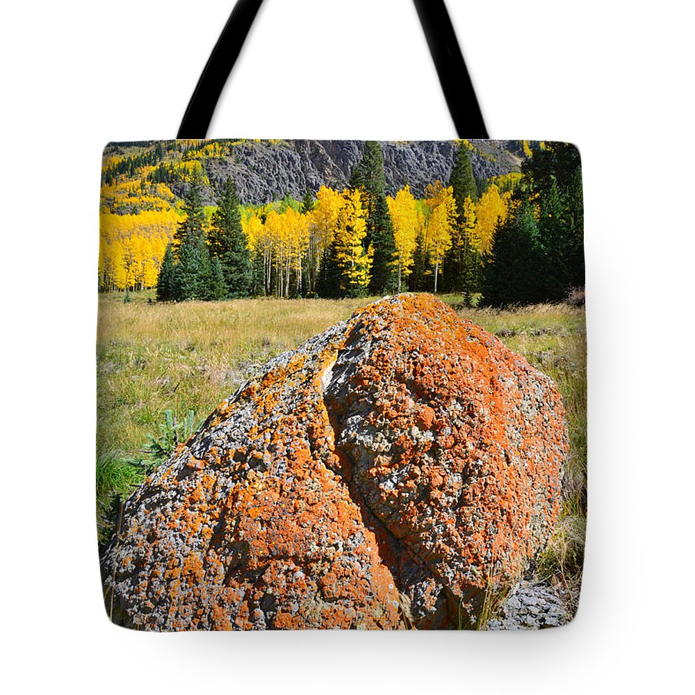 Colorado Tote Bag featuring the photograph Red Mountain Boulder by Ray Mathis