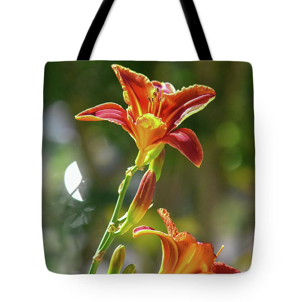 Linda Brody Tote Bag featuring the photograph Red Orange Day Lilies I by Linda Brody