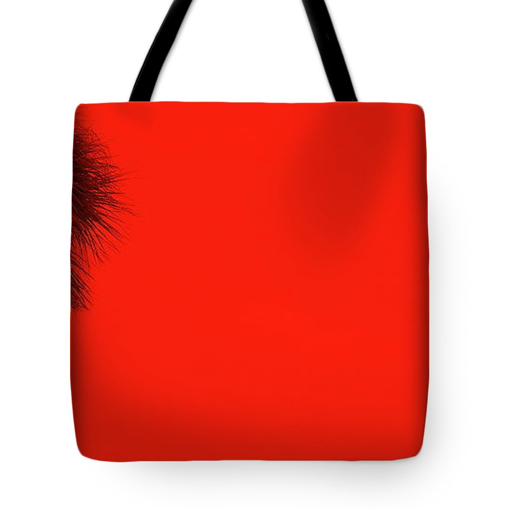 Landscape Tote Bag featuring the photograph Red Palm by Ed Smith