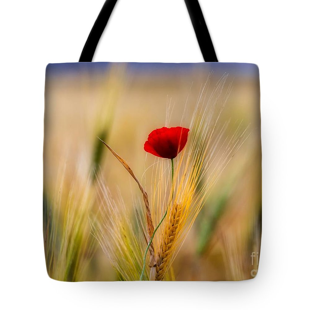 Poppy Tote Bag featuring the photograph Red Passion by Konstantinos Lagos