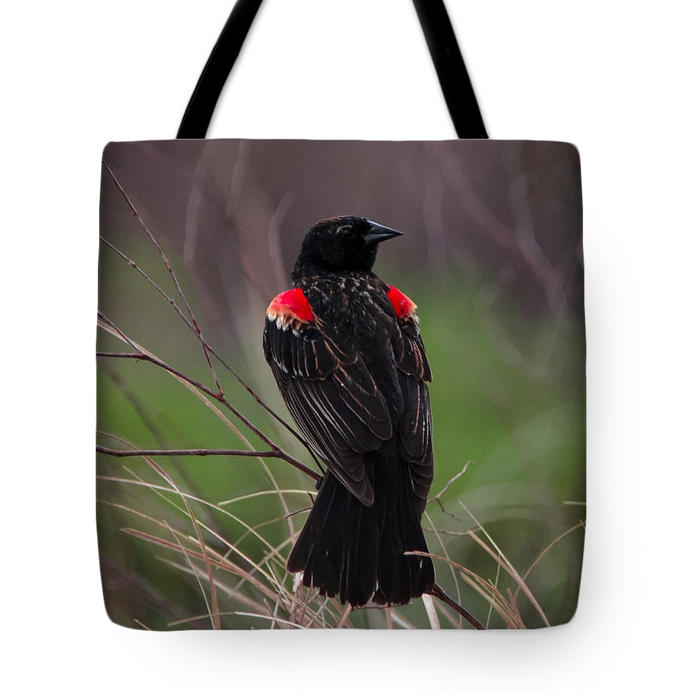 Bird Tote Bag featuring the photograph Red Patches by Steve Marler