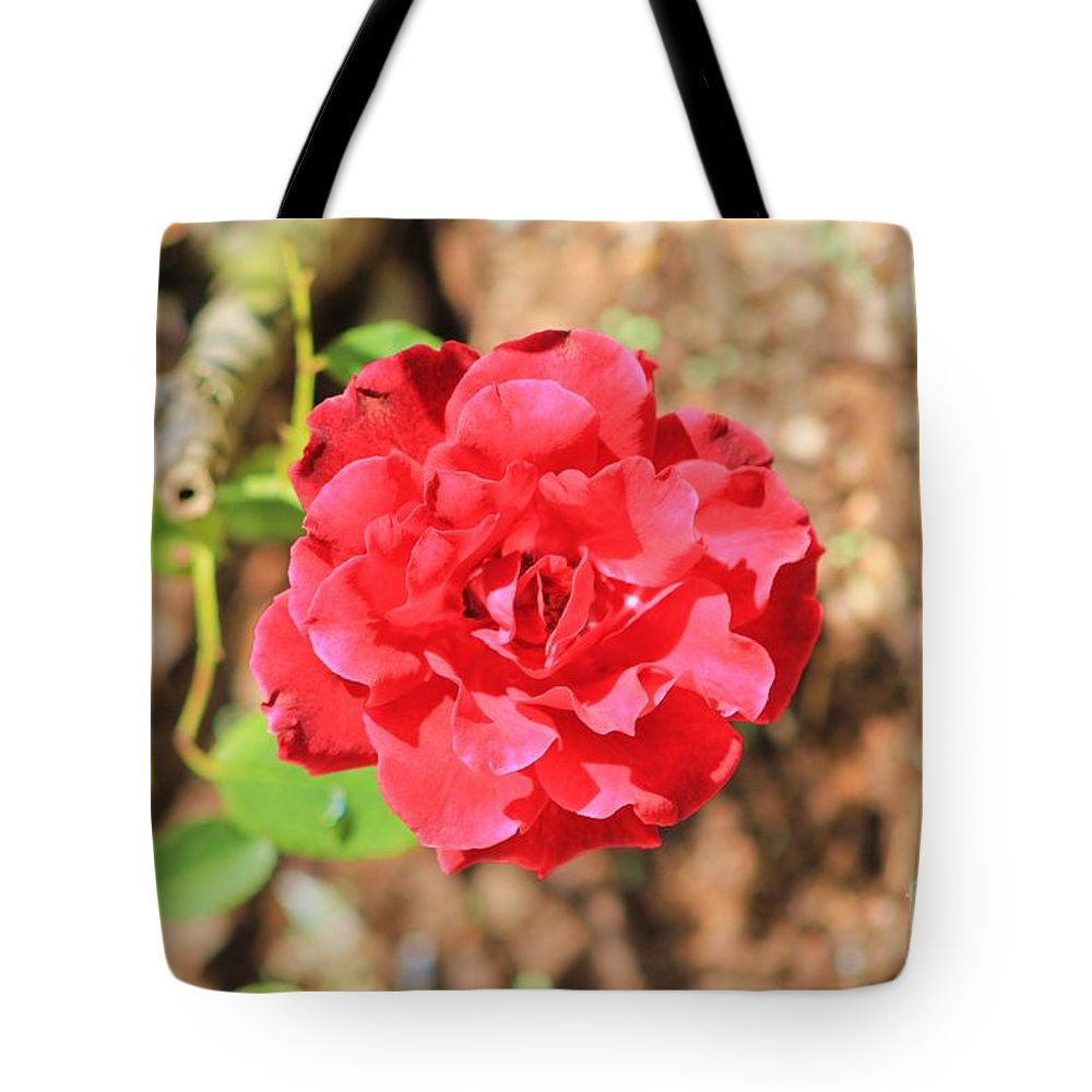 Rose Tote Bag featuring the photograph Red Rose by Michelle Powell
