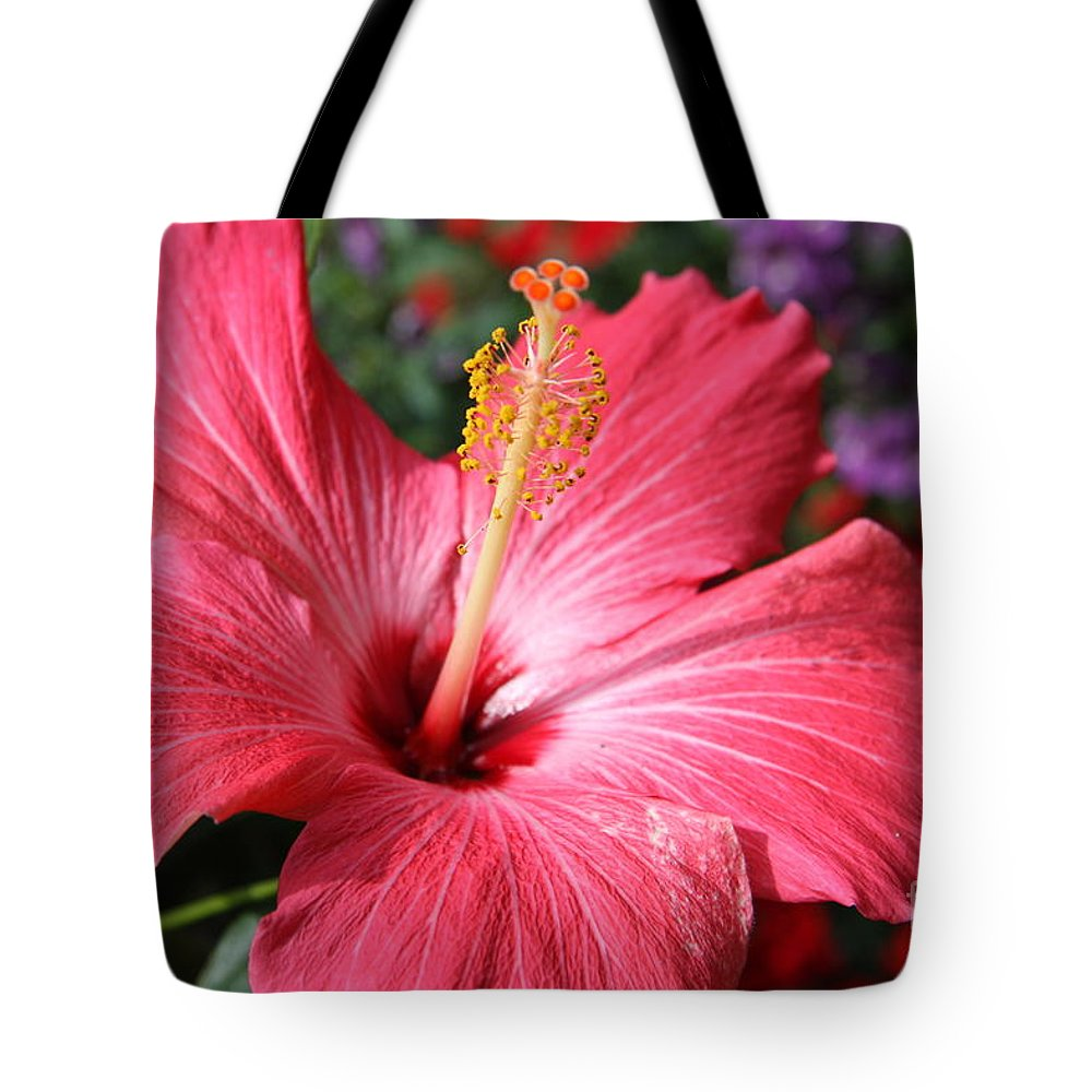 Hibiscus Tote Bag featuring the photograph Red Rose Of Sharon by Christiane Schulze Art And Photography