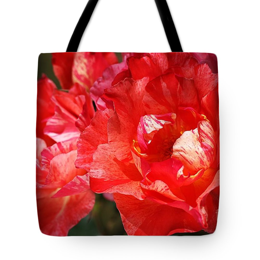 Rose Tote Bag featuring the photograph Red Rose With A Whisper Of Yellow by Joy Watson