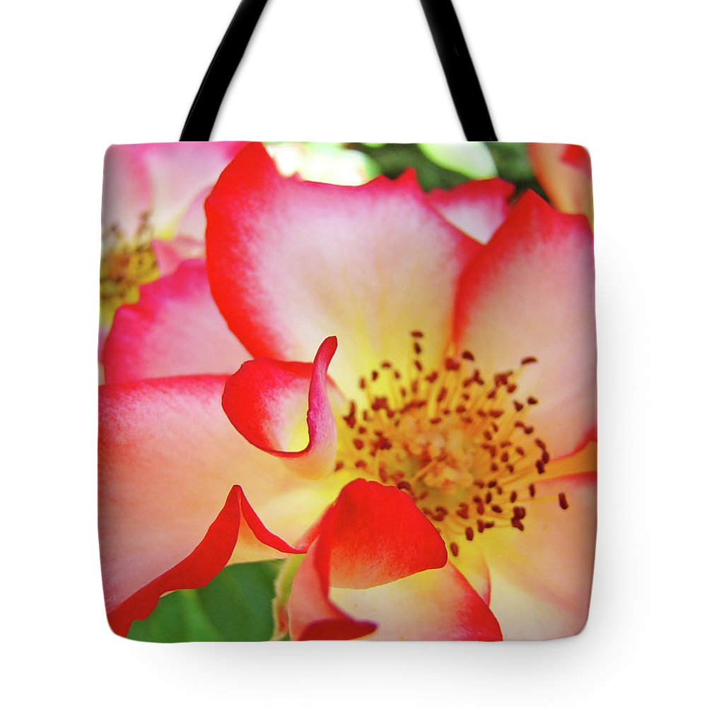 Rose Tote Bag featuring the photograph Red Roses White Yellow Rose Flower Floral Art Print Baslee Troutman by Baslee Troutman