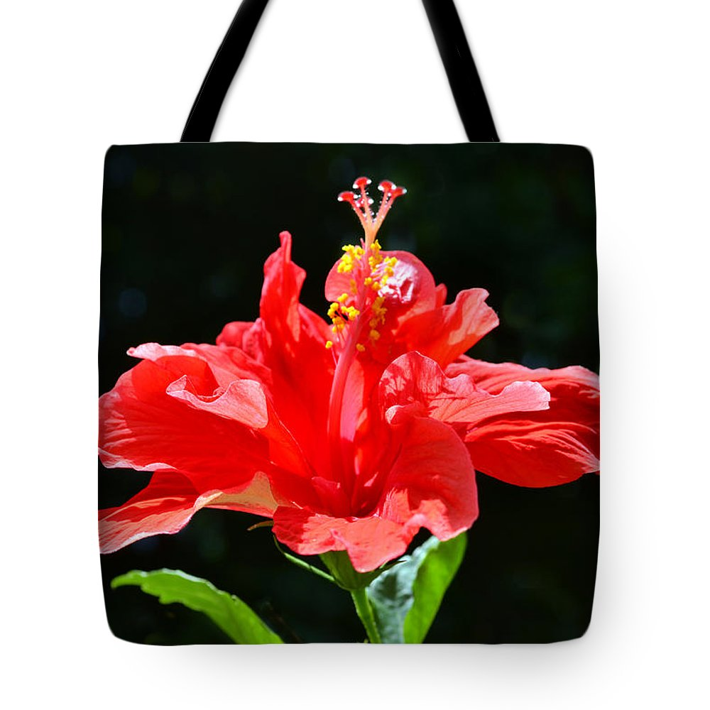 Hibiscus Tote Bag featuring the photograph Red by Sandi OReilly