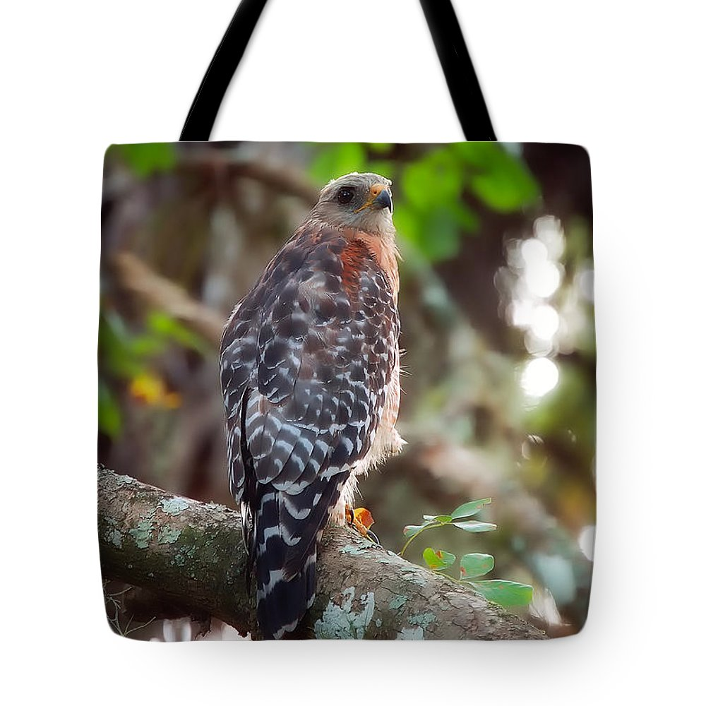 Bird Tote Bag featuring the greeting card Red-shouldered Hawk by Rich Leighton