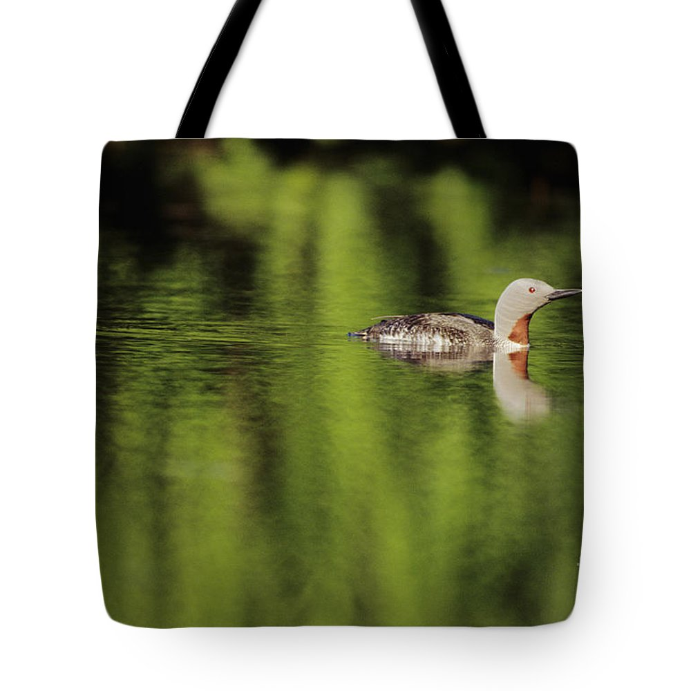 Alaska Tote Bag featuring the photograph Red Throated Loon by John Hyde - Printscapes