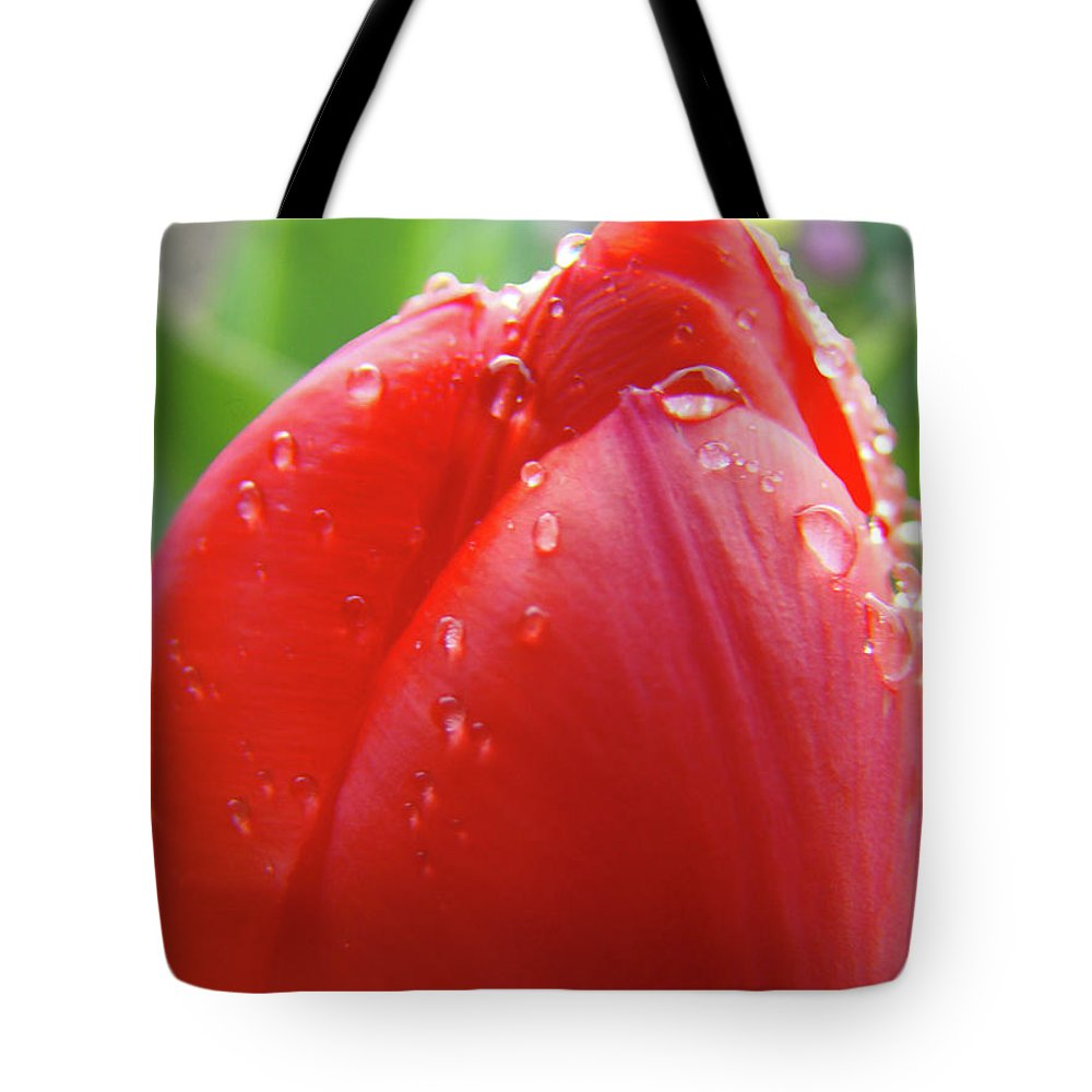 �tulips Artwork� Tote Bag featuring the photograph Red Tulip Flower Macro Artwork 16 Floral Flowers Art Prints Spring Dew Drops Nature Art by Baslee Troutman