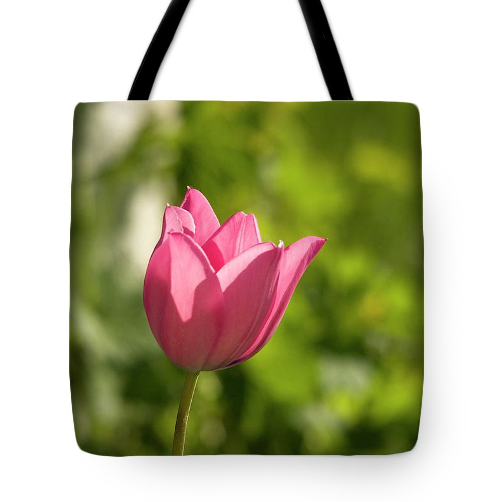 Tulip In The Garden Tote Bag featuring the photograph Red Tulip Head by Cliff Norton